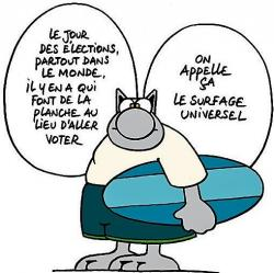 Le chat geluck vote ou abstention2 89d85